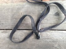 Tiny dog leash. GIVING IT TO TABBY.
