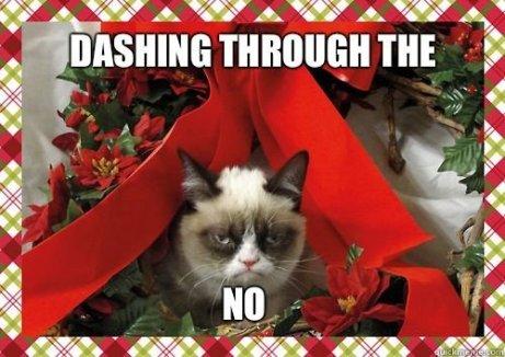 Grumpy+Cat+Xmas_39296e_4241588