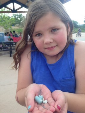 Sweet Amalia and a robin's egg
