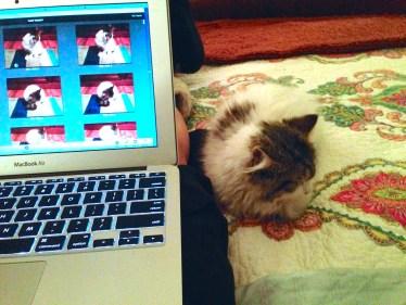 Helping me work