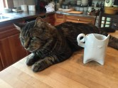 Mr. Bates and Natasha's cat mug