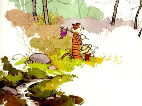 Calvin-and-Hobbes-calvin-and-hobbes-1395571-1024-768.jpg
