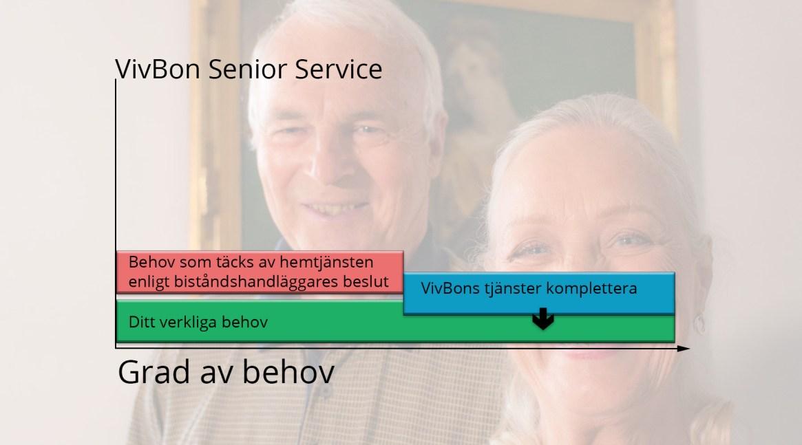 Vivbon Senior Service behovs graf