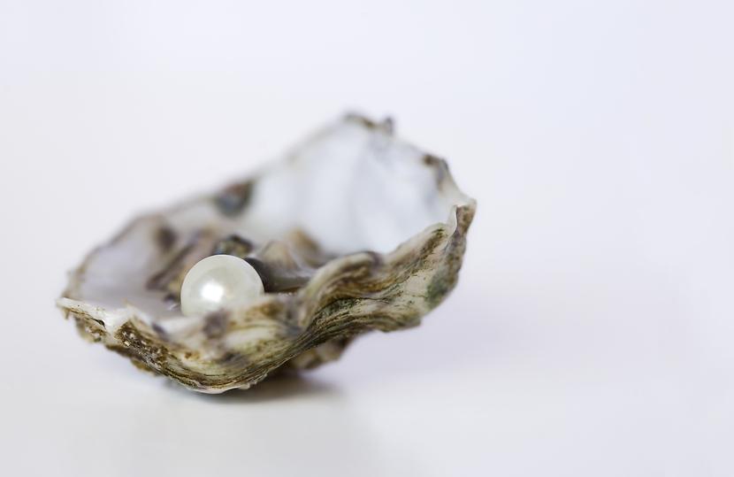 Vivbon - Livea hemtjänst pärlan