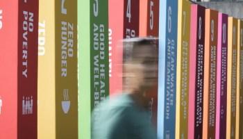 ODS Agenda de desarrollo sostenible VIVE Green