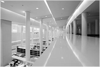 Biblioteca - Ciudad de la Cultura - Santiago de Compostela
