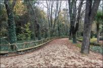 Campo grande Valladolid