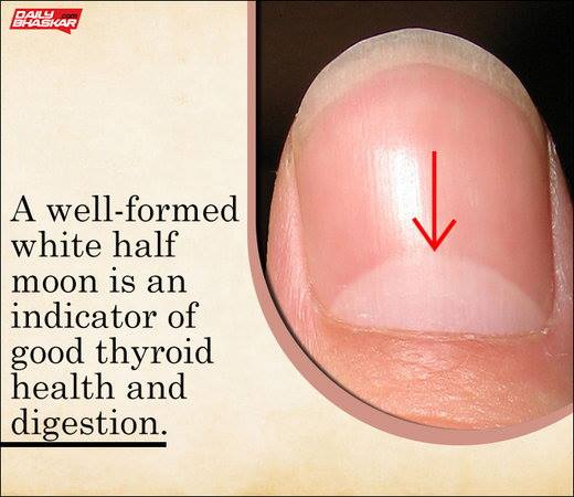 check Indicator of Good thyroid health and digestion