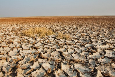 In Rann of Kutch, post monsoon water recedes leaving behind a landscape of dry and barren land