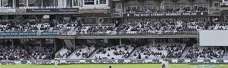 When Cricket Mimics Life