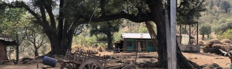 The Furthest Distance To Travel For Helping Adivasi