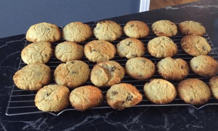 Biscuits à la farine de noix de coco