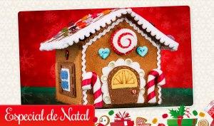 Artesanato de Natal Casinha de Gingers