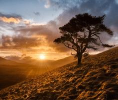 6 Dicas simples para se tornar mais positivo