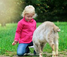 Atos espontâneos de bondade: O segundo passo para felicidade.
