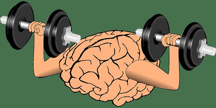 Como desenvolver o seu cérebro para o seu sucesso.