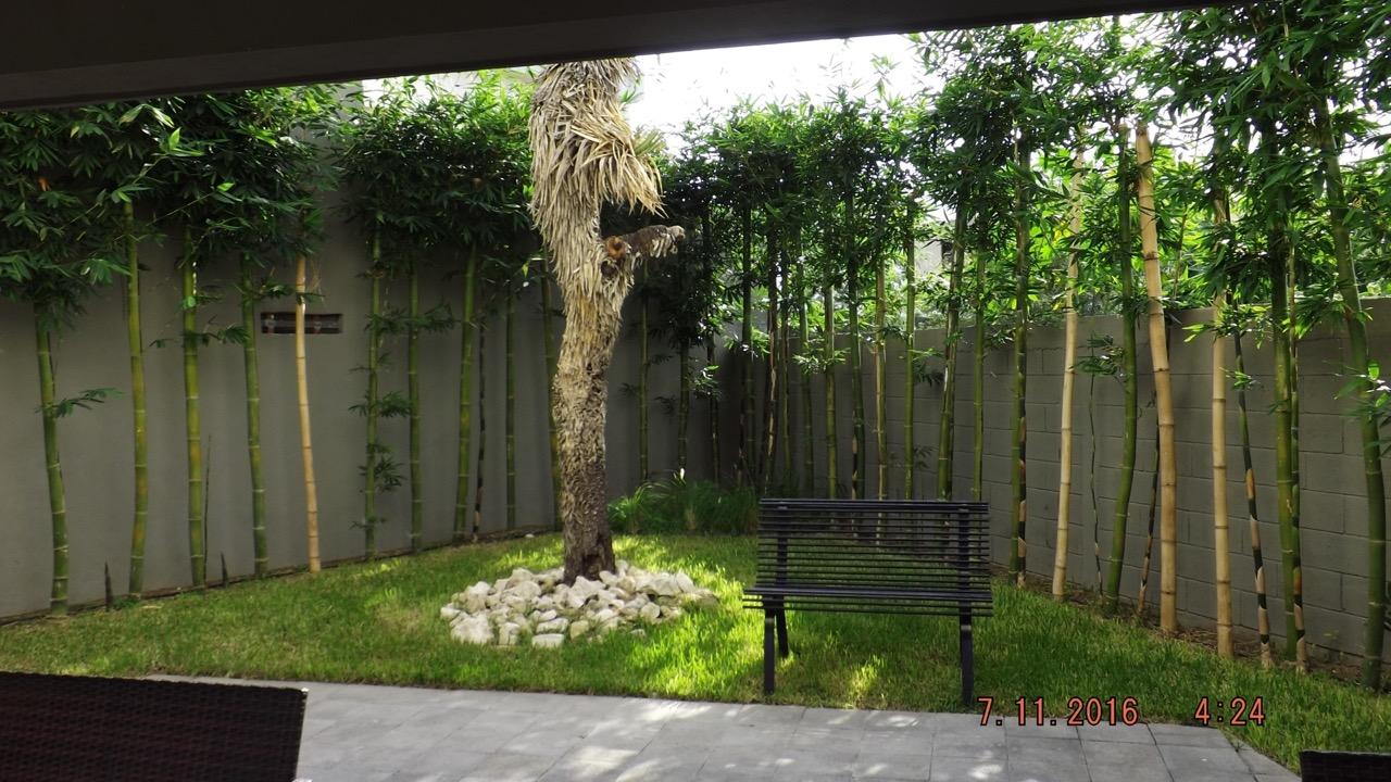 Jardin- Viverdi México Jardinería Y Fumigación - Viverdimexico.com
