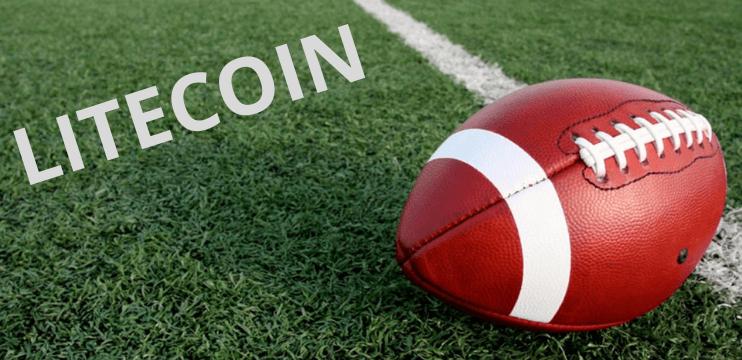 Miami Dolphins anuncia Litecoin como criptomoeda oficial da equipe