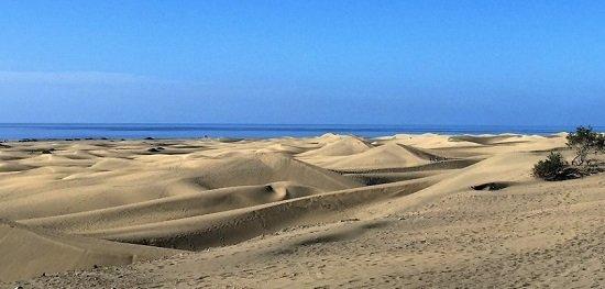 Tutto il senza glutine di Gran Canaria