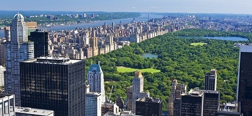 Hotels and shop with gluten-free products in New York City