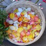 wpid-160px-A-basket-full-of-rose-petals-4497-2013-06-28-18-07.jpg