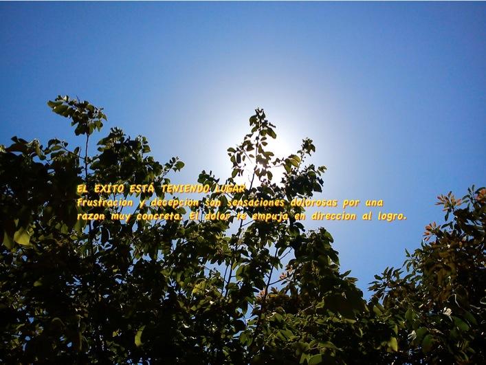 wpid-17713-2013-07-17-12-16.jpg