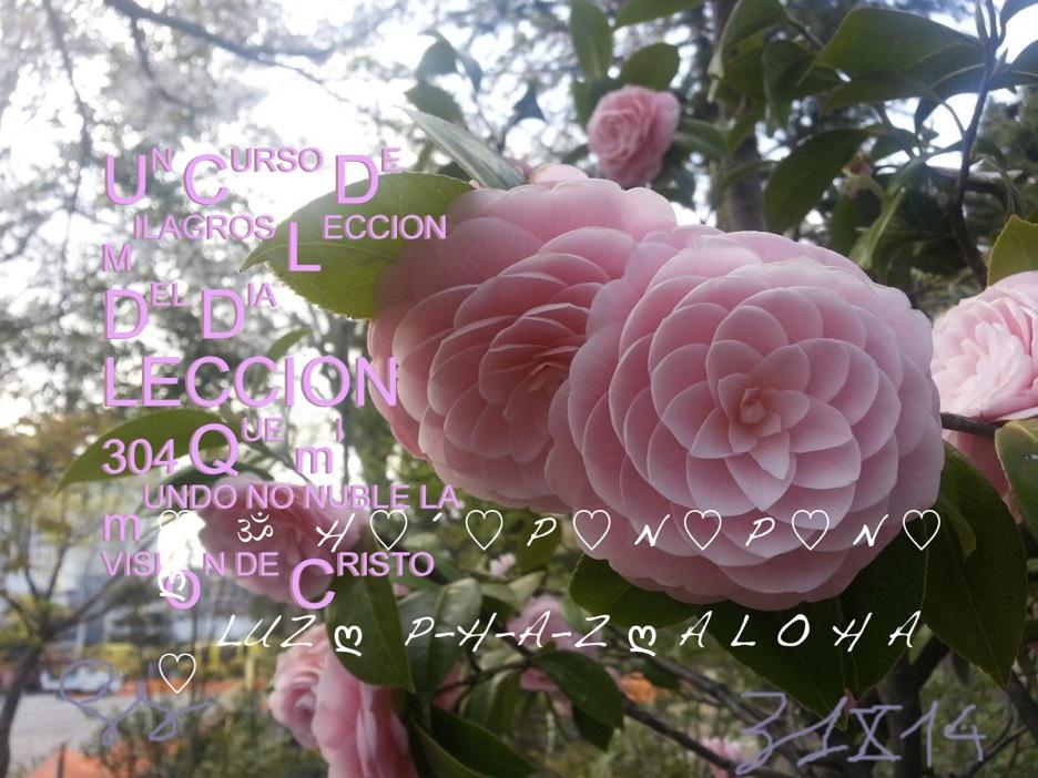 wpid-311014-2014-10-31-14-02.jpg