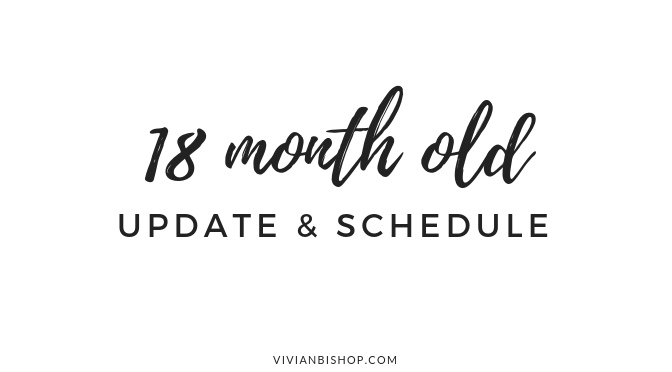 18 Month Update & Schedule