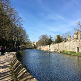 Moat around the Bishop's Palace in Wells