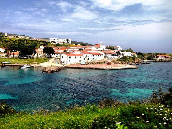 Il mare incontaminato dell'Asinara in Sardegna