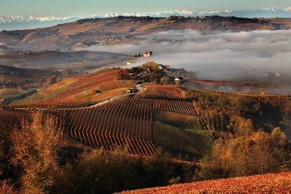 Langhe-Roero e Monferrato tra i nuovi siti patrimonio dell'umanità Unesco 2014