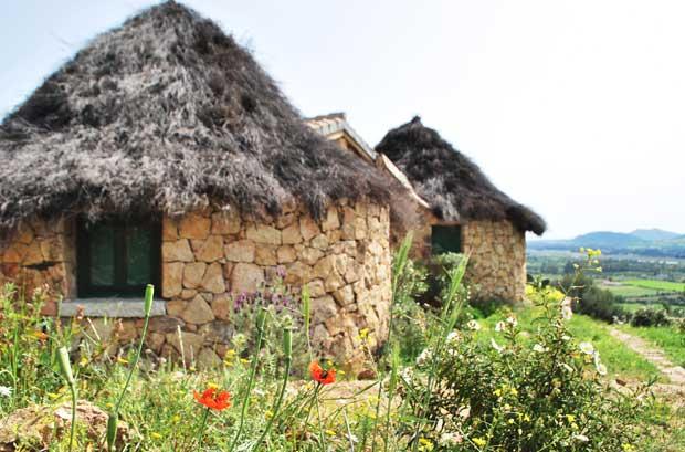 Vacanze biologiche, rigenerarsi rispettando la natura