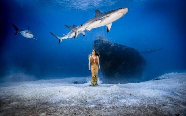 La modella con gli squali in fondo al mare
