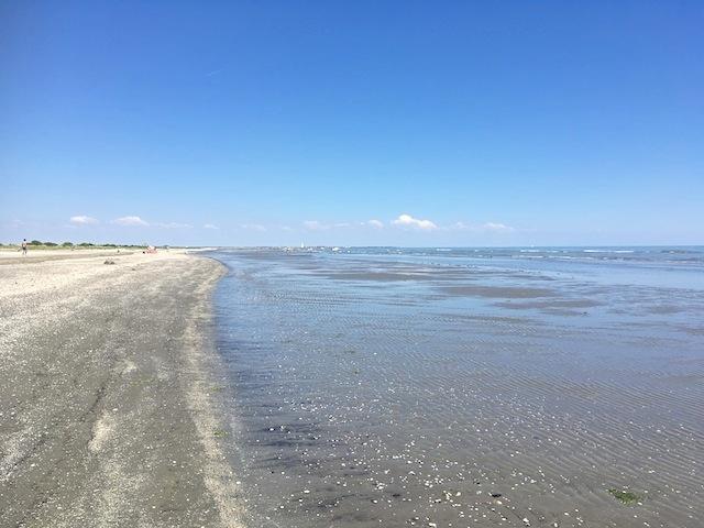 Turismo Slow alla scoperta del Parco regionale del Delta del Po