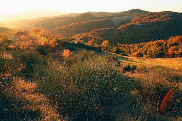 Foliage in Italia, dove ammirare l'autunno e scoprire i sapori locali