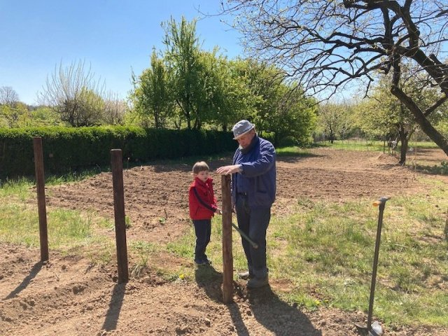 Giardinaggio con i bambini: come piantare i gladioli