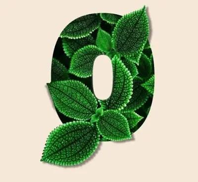 leaf text symbols