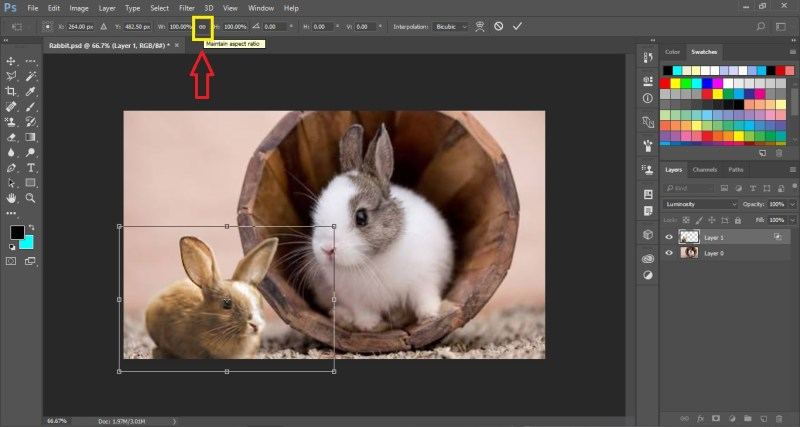 Select Chain Icon to Maintain Aspect Ratio