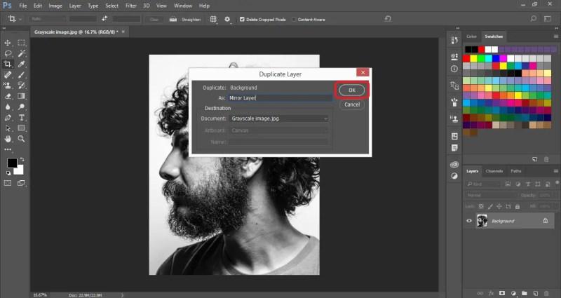 Create a Duplicate Layer