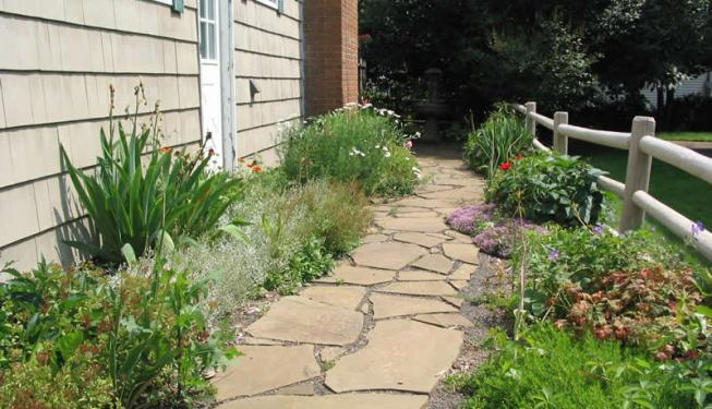 Stone Pathway Perennial Planting
