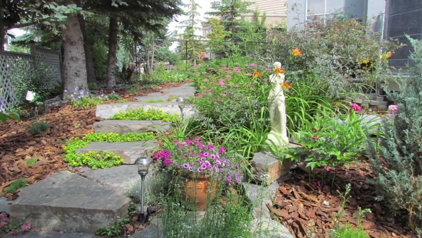 Planting trees, shrubs and perennials