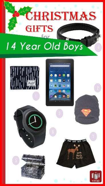 Cool Gifts for 14 Year Old Boys (Christmas 2015) - Vivid's
