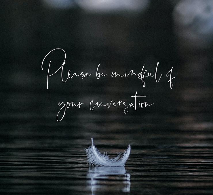 Mindfulness + Vivid Rose