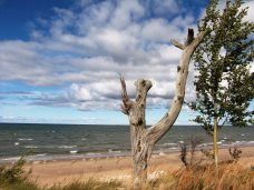 Baltic-Sea-at-Kolka-Cape-030514BE5AB5AB70