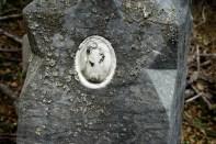 goldman_vivien_Memoir-in-Stone-19