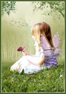 Butterfly_by_Paigesmum