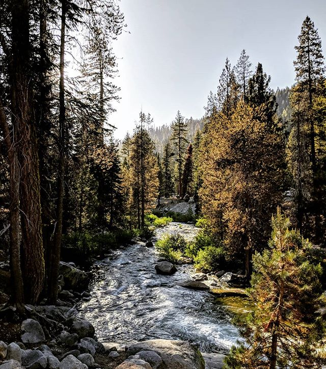 The Kaweah River at the Sequoia National Park.  #kaweahriver #sequoianationalpark #nationalpark  #sierranevada #nature #landscape #naturephotography #landscapephotography #amateurphotography #photography #amateurphotographer #photographer #pixel2xlphotography