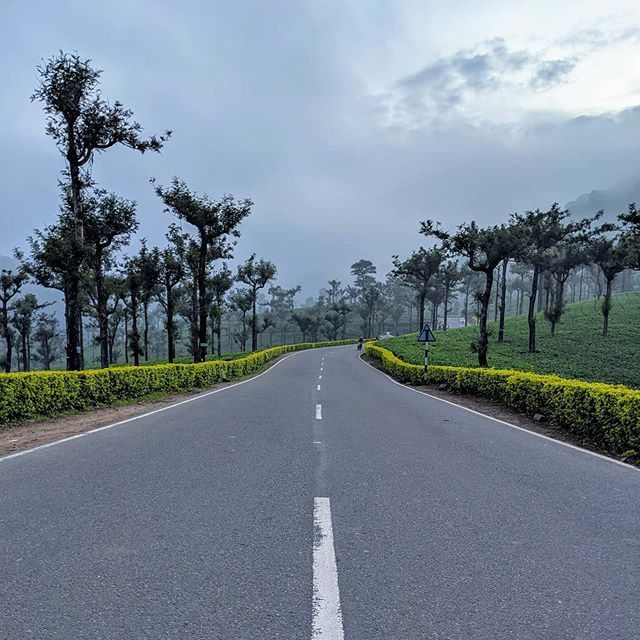 The Pollachi-Valpari Road in Tamil Nadu (in the Western Ghats) takes you through some beautiful tea plantations.  #india #incredibleindia #tamilnadu #teaplantation #scenery #amateurphotographer #amateurphotography #photographer #photography #mobilephotography #pixel4xlphotography