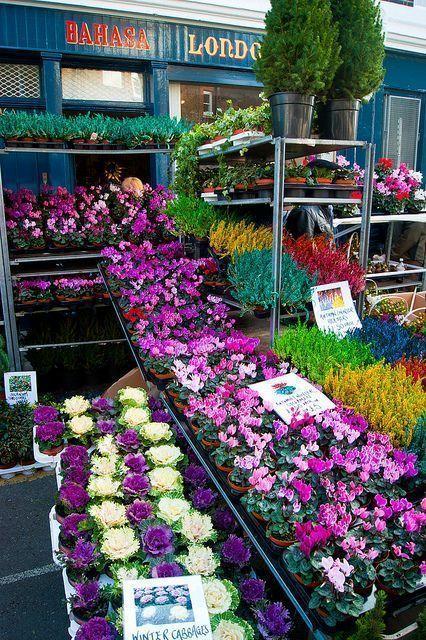Londres. Columbia Road Flower Market
