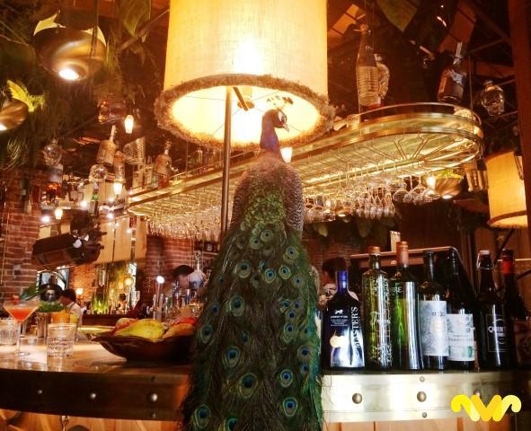 amazonico-restaurante-bar